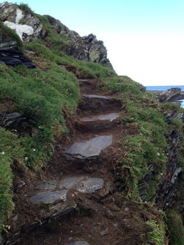 Cliff steps