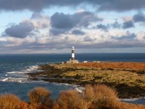 View of Mew Island from Copeland Bird Observatory. Photographer Ian McKee.