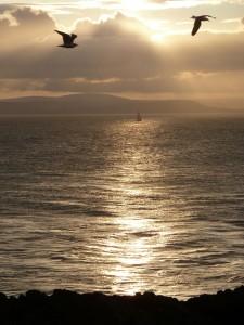 Sunset on Copeland Bird Observatory. Photographer Ian McKee.