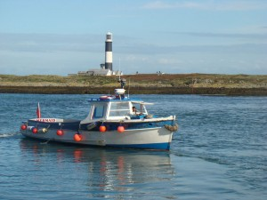Boat arriving at the east jetty on Copeland BIrd Observatory