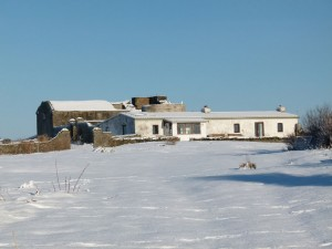 The buildings on Copeland Bird Observatory